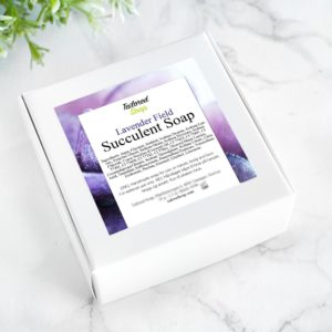 Purple Lavender Field Succulent Soap by Tailored Soap