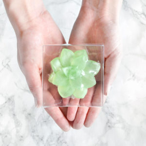 Green Apple Succulent Soaps by Tailored Soap in packaging