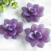 Purple Lavender Field Succulent Soap by Tailored Soap