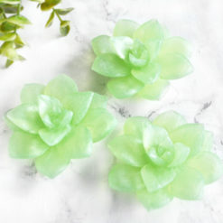 Green Apple Succulent Soaps by Tailored Soap