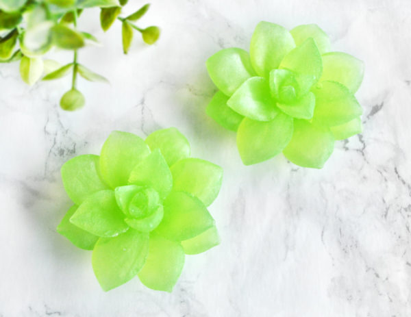 Green Succulent Soaps by Tailored Soap