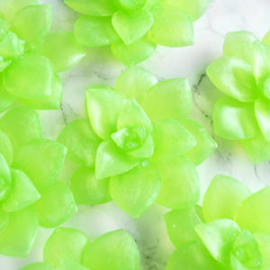 Close up picture of green Succulent Soaps by Tailored Soap
