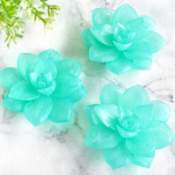 Moroccan Mint Succulent Soap by Tailored Soap
