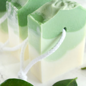 Bonsai Soap by Tailored Soap