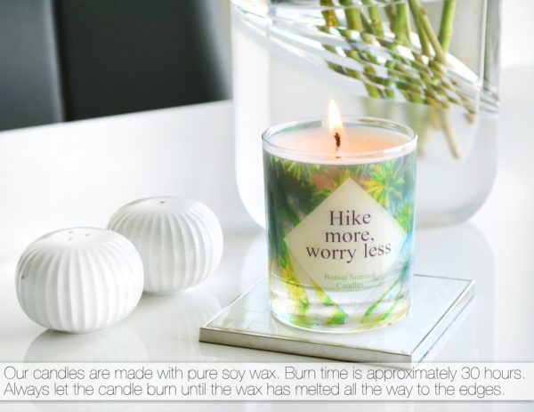 """Hike More, Worry Less"" Candle by Tailored Soap"
