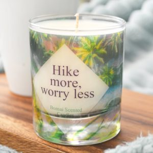 Hike more worry less hiking quote luxury glass candle with box